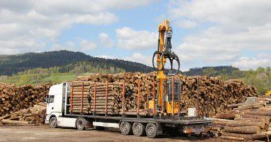 С начала года Россельхознадзор пресек 29случаев незаконного вывоза леса из Кировской области