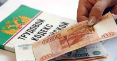 Директору предприятия в Лузском районе объявлено предостережение по задолженности зарплаты свои работникам