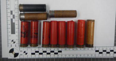В Лузском районе поймали двух браконьеров: у одного из них дома обнаружили боеприпасы
