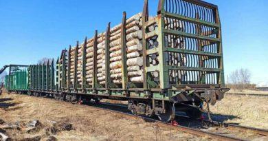 В Опаринском районе с рельсов сошли три грузовых вагона